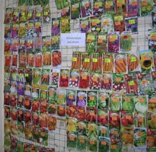 prodaja-semena