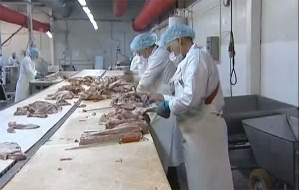 технология производства колбас
